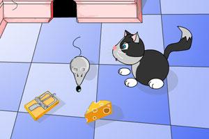 家中的老鼠